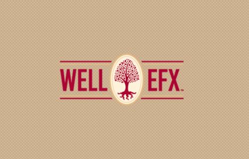 wellefx